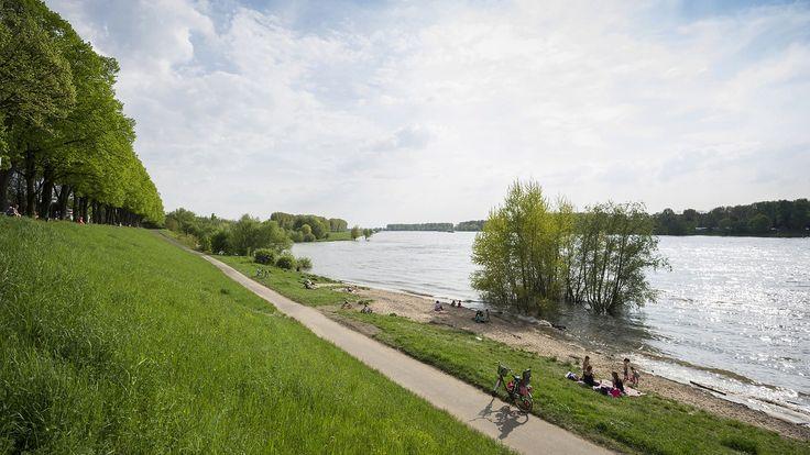 Der RheinRadWeg in NRW | Bildquelle: newspixx-vario-images