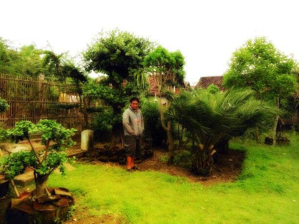 """At kediri.. """"beautiful garden"""""""