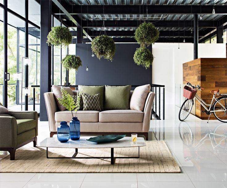 Muebles, Dixy y Natuzzi - Iluminación, Inter Royal - Artículos Decorativos, Andrea House - Tapetes, Tufan - Bicicleta, T Turbo