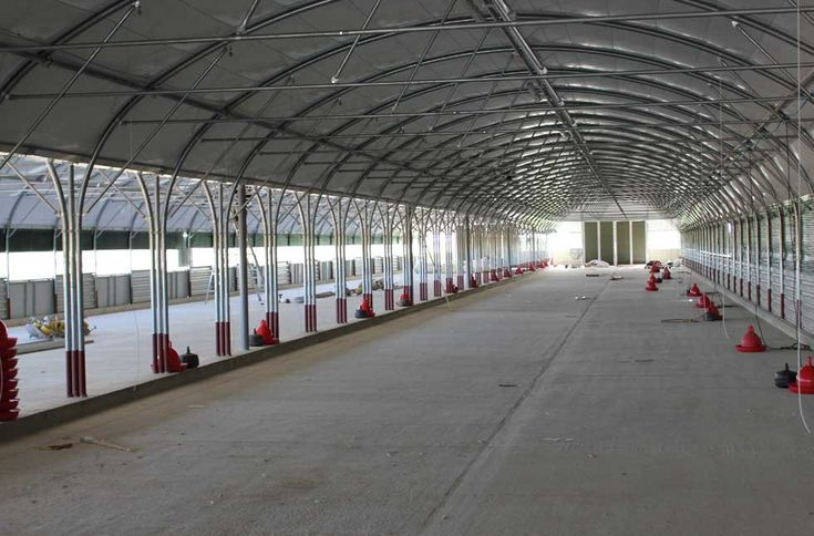 commercial poultry house pictures | Internal commercial poultry house