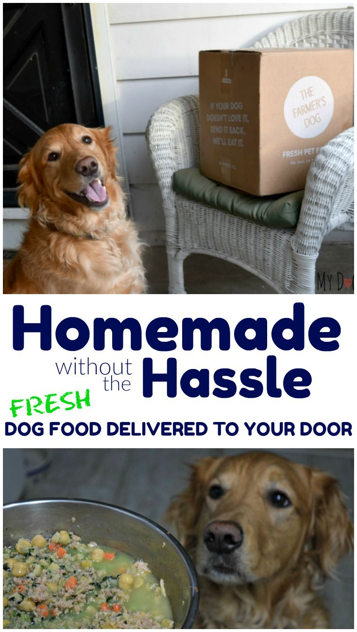 """""""The Farmer's Dog"""" Review Custom Food Delivered Straight"""