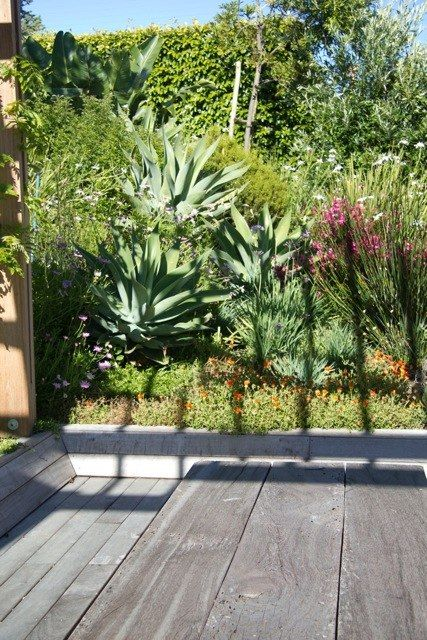 Planting in layers, for a soft and approachable effect. Exterior Design Cape Town