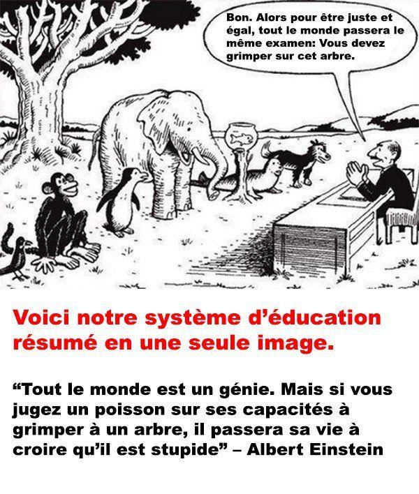 Tellement vrai! Cela représente aussi exactement notre système scolaire?! Vive montessori;-)