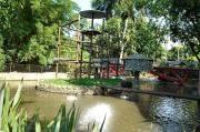 Ambiente dentro do Zoológico de Pomerode. #ZooPomerode #Zoológico #Pomerode