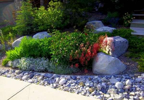 715 best rock garden ideas images on pinterest. Black Bedroom Furniture Sets. Home Design Ideas