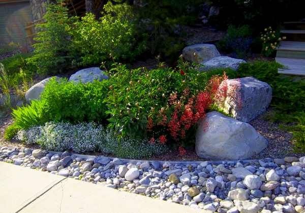 Landscaping with rocks is increasing in popularity as water consumption concerns continue to rise. They are attractive, affordable to install, and very easy to maintain.   Picture compliments of a homeowner with a dream yard.