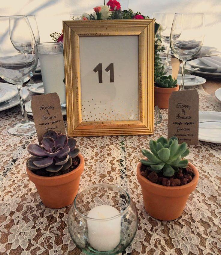 Suculentas para boda recuerdos #weeding #vintage #Suculents