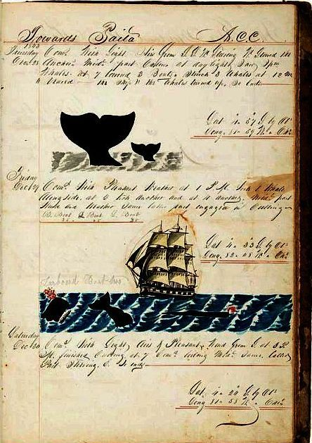 Whaling Journal by Aaron C. Cushman, 1842-1845.