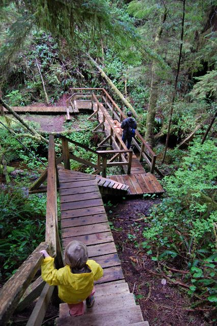 nature walk, tofino, bc  been here, loved it