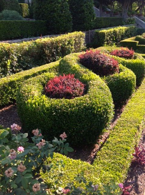 Over And Under, Snip And Clip. You Can Do Anything With This Plant You Can  Do With Boxwood. The Gardens Of Floreciendo Are Home To Many Creative ...