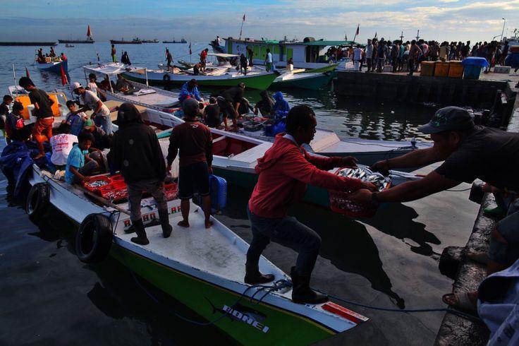 Pelabuhan Pelelangan Ikan Paotere Makassar, Sulawesi Selataan, Indonesia