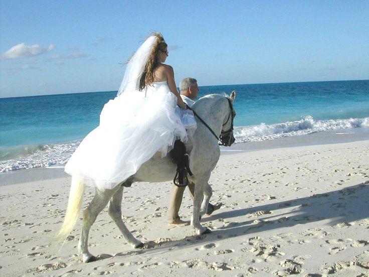 beach dream!: Hors Matching, Beaches Wedding Hors, Beaches Inspiration, Beaches Dreams, White Horses, Wedding Dreams, The Bride, Matching Bride, Bride Dresses