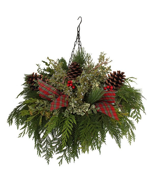 Look at this 18'' Juniper & Pine Hanging Basket on #zulily today!