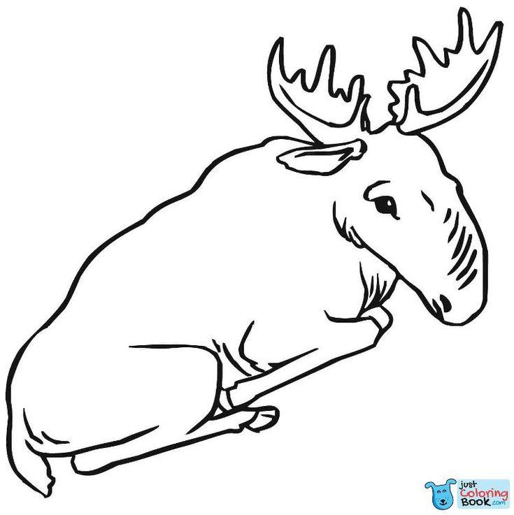 Pin Di Deer Coloring Pages