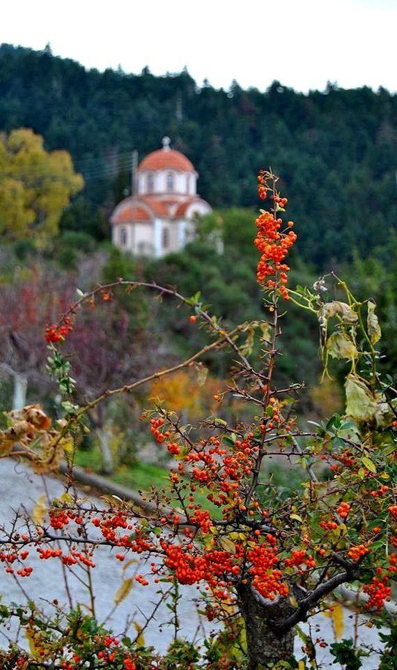 Monastery Malevi ~ Kynouria, Arcadia, Greece