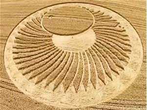 ct.44--Image result for crop circles 2015                                                                                                                                                                                 More