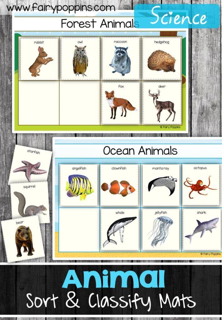 Animal Sort And Classify Animal Classification Animal Habitats Animal Worksheets