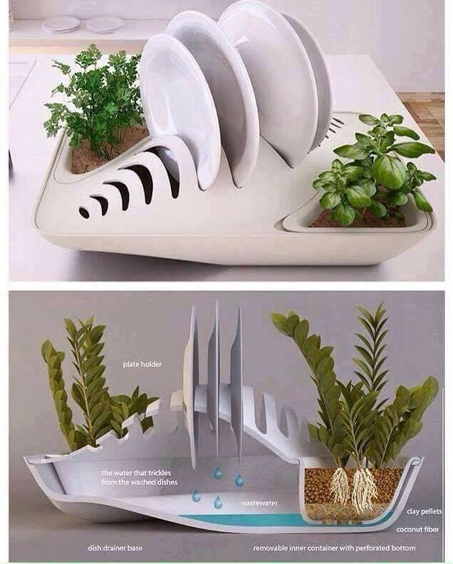 How neat is this? Dry your dishes and grow plants at the same time, what a great way to recycle your water! #ArkLabs