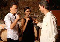 Wine Information for Beginners - Beginners Wine Guide
