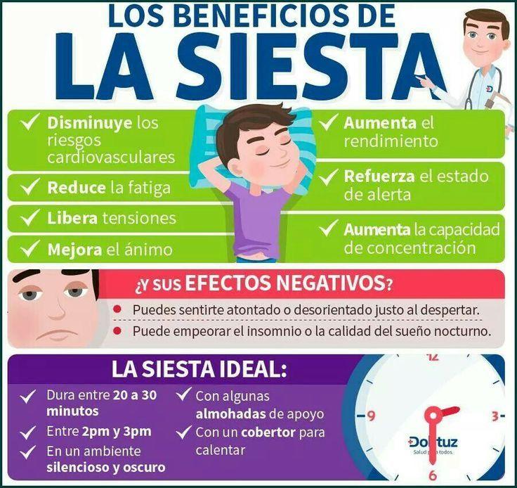 La siesta no es un capricho ni una actitud de vagancia: es sumamente saludable para nuestro cuerpo y nuestro cerebro, que a media tarde pide un descanso.