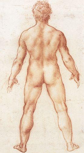 Figura di nudo maschile, veduta dorsale - 1503-1509 - Leonardo - Opere d'Arte su Tela - Listino prodotti - Digitalpix - Canvas - Art - Artist - Painting