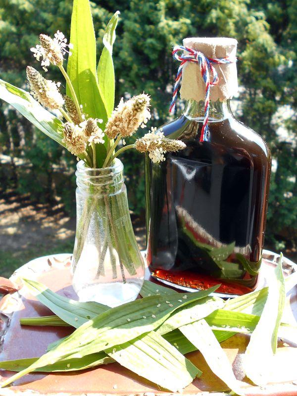 Temný Jitrocelový sirup / Buckhorn syrup