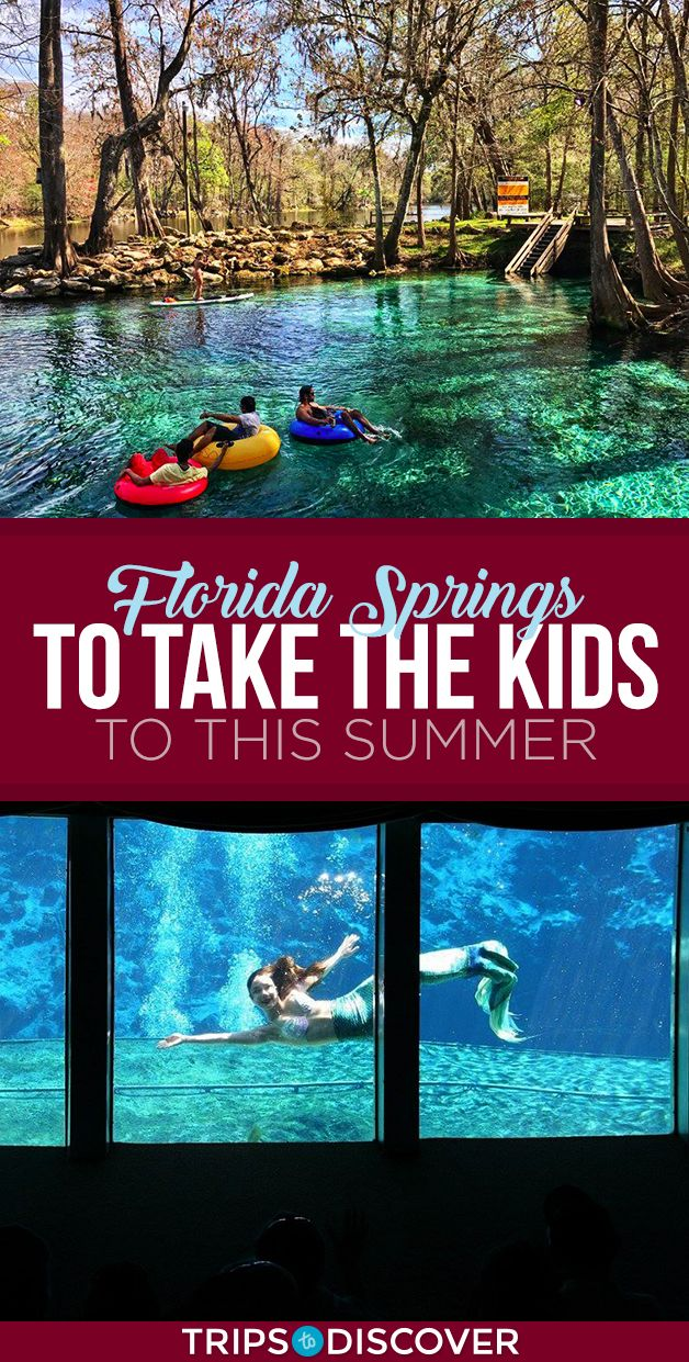 11 Florida Springs The Kids Will Be Begging To Jump Into This Summer Florida Vacation Florida Travel Visit Florida