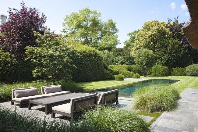 Natural Pools | Contemporary rectangular pool in lawn | Bob Monteyne