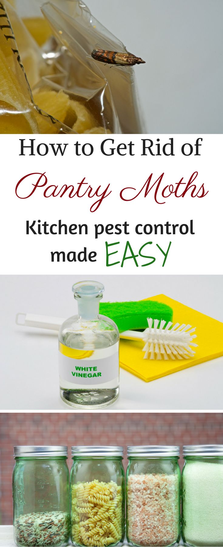 1000 Images About Cleaning Tips And Tricks On Pinterest Cleaning Tips Home Improvements And
