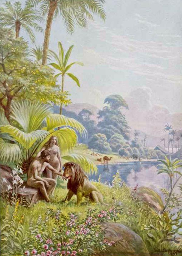 47 best Adam and Eve images on Pinterest Albrecht durer, Artist