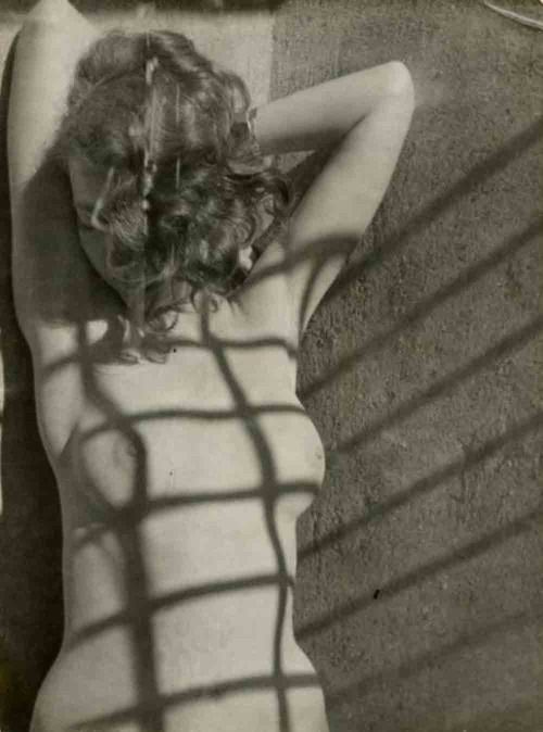 Nude with shadows , Paris   -   Ferenc Berko , 1937