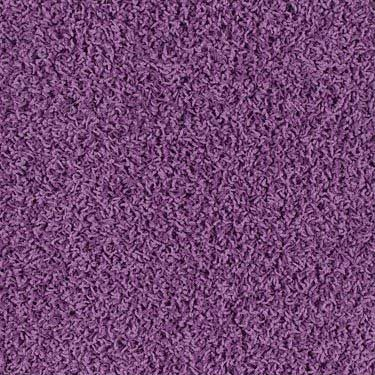 Best 25 Purple Carpet Ideas On Pinterest Purple Master