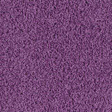 17 Best Images About Carpet On Pinterest Shaw Carpet
