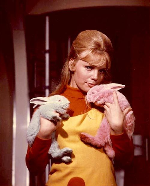 Stop pointing that thing at me., Marta Kristen, Lost in Space 1965