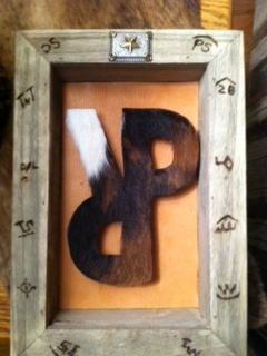 Shadow box wall hanging~ would be fun to do with the ol' spurrin' P for lukes room