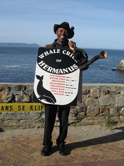 The Whale Crier - Hermanus, South Africa