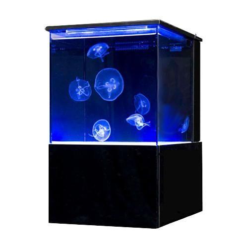 Sunset Marine Labs EON - 10 Gallon Real Jellyfish Aquarium (EON-JF-10) - Dream Fish Tanks