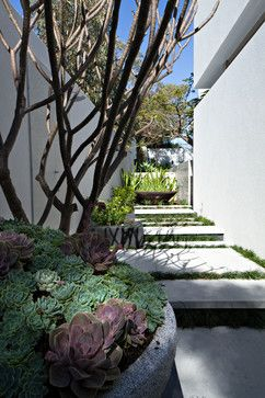 side of house, City Beach, Tim Davies Landscaping