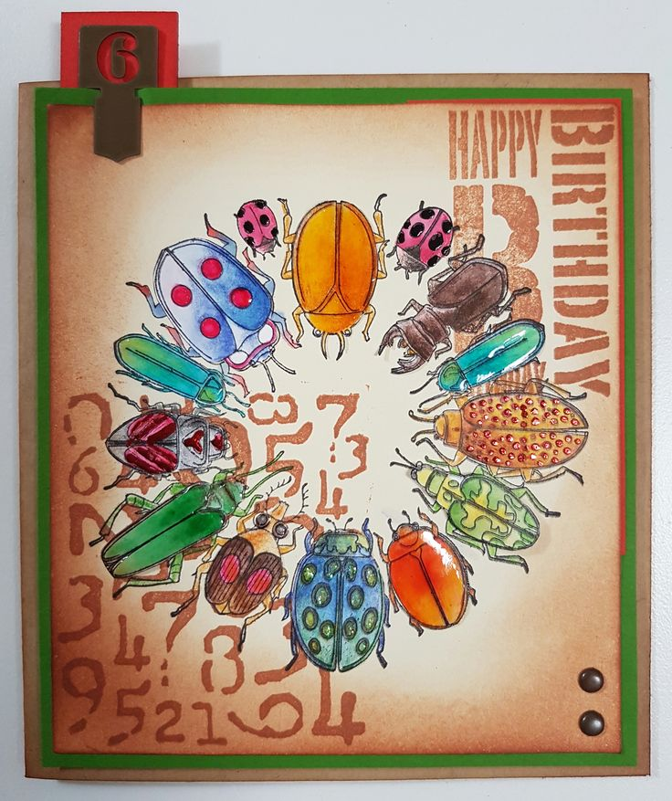 Bugs Galore 80347 by Stamps Happen Inc; Bold Birthday 3203D & Number Background 4485E by Stamp-it. Card by Susan of Art Attic Studio