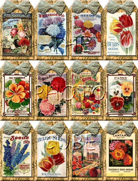 FLoWER SeeD PaCKETS / ViNtAgE ArT Hang/Gift Tags/craft supplies- Printable Collage Sheet JPG Digital File-Buy ONe GEt ONe FREE embellishment gift label rustic bookmark fanciful farm country kitchen wedding reception party BOGO thephotocube 2.50 USD