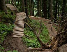 Trails | Bikepark Leogang
