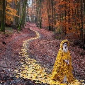 Equinozio d'autunno e luna del raccolto