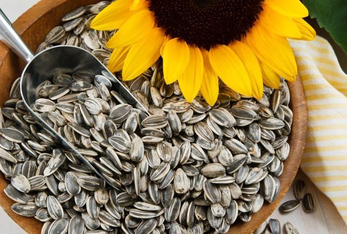 Las semillas de girasol son emanadas del centro de la flor de los girasoles, estas son de color verde grisáceo o negro en rayas gris o negro en forma almendrada.  Las semillas, de alto contenido en aceite, son las principales fuentes de producción de aceite de girasol en todo el mundo.
