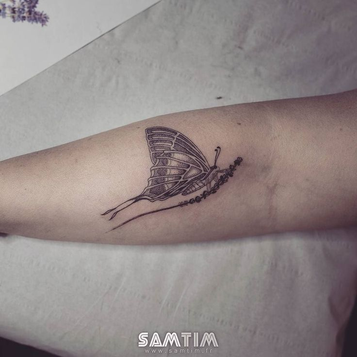 #papillon sur une #tige de #lavande  merci pour ta patience Valérie ! #tatouage #tattoo #tatouagepapillon #butterflytattoo #sam #samtim #saintpons #mazamet #olargues #béziers #narbonne #carcassonne #saintaffrique #paris #toulouse #montpellier #france