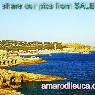 saverio scattaglia #specchia #salento #puglia #italy #wine #sea #negroamaro #cantinescattaglia.it #amarodileuca.com