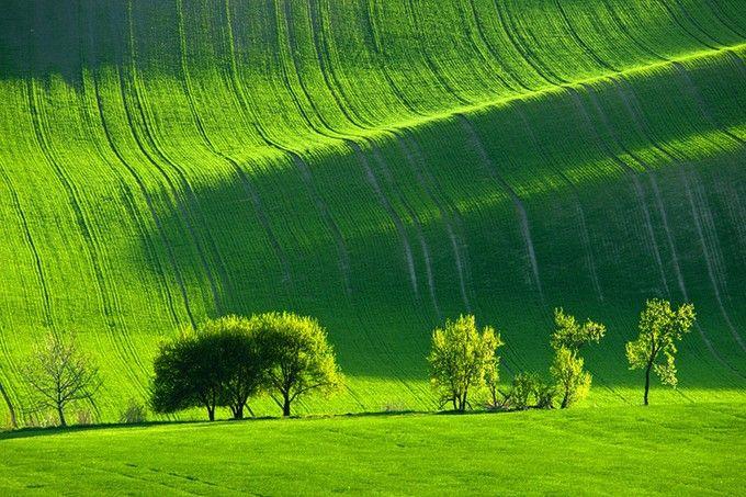 緑の絨毯!チェコの秘境「モラヴィア」の大草原が言葉を失う美しさ