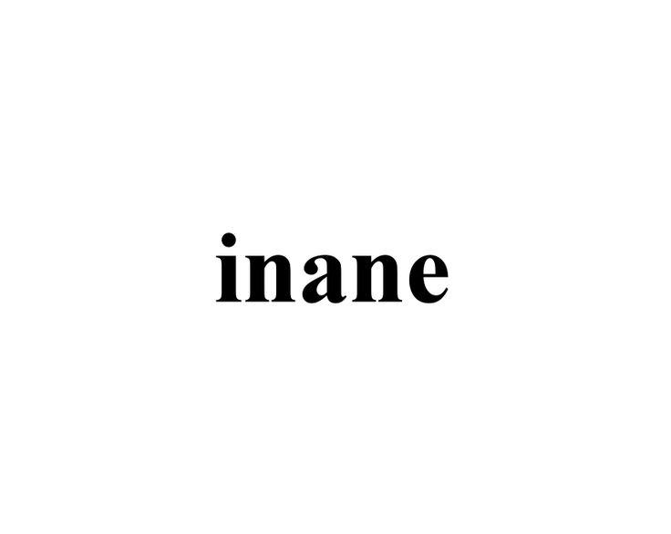 in·ane  iˈnān adjective silly; stupid.  synonyms:silly, foolish, stupid, fatuous, idiotic, ridiculous, ludicrous, absurd, senseless, asinine, frivolous, vapid; childish, puerile; informaldumb, moronic, ditzy, daft