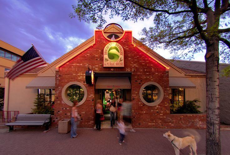 Dog Friendly Beer Pubs In Bend Oregon