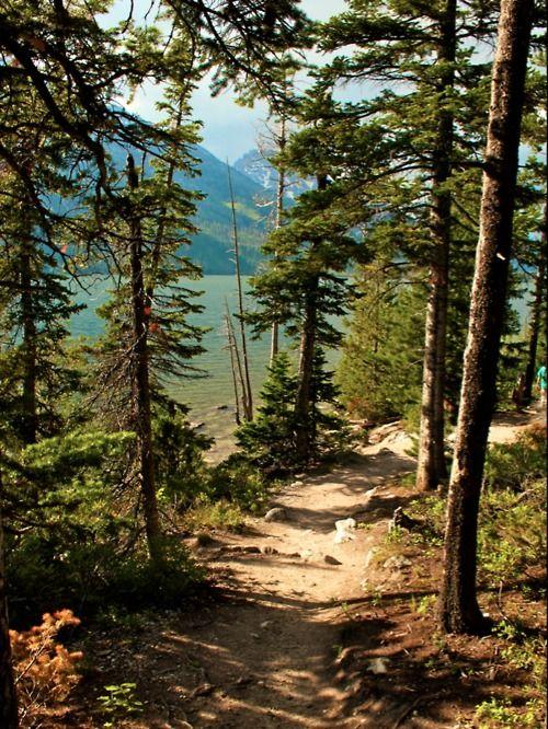 A beautiful hike