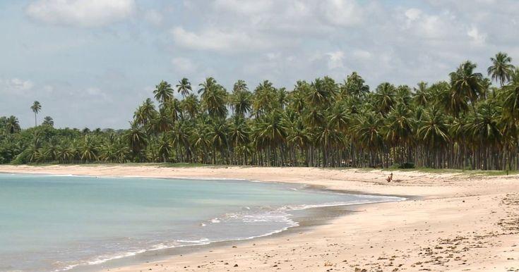 Águas de vários tons nas praias de AL criam paisagem de cartão postal